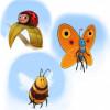3_bugs